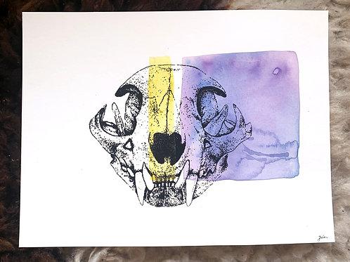 Bobcat Skull Misprint 2