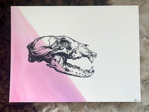 Bear Skull Misprint 1