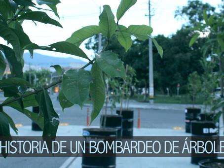 Historia de un bombardeo de árboles