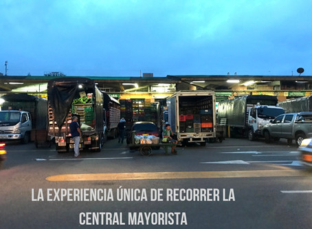 La experiencia única de recorrer la Central Mayorista de Antioquia