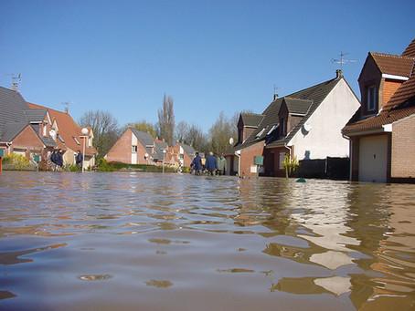Les champions de la construction en zone inondable