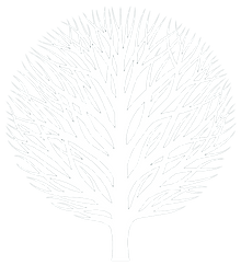 The Cali Center - white tree.png