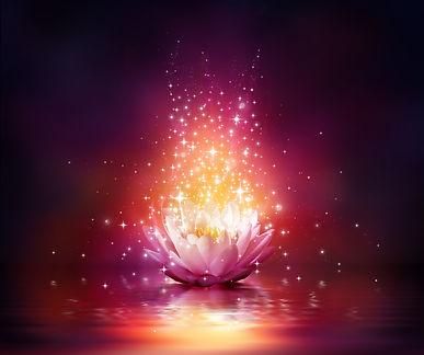 Sacred Soul Series / Live Meditation