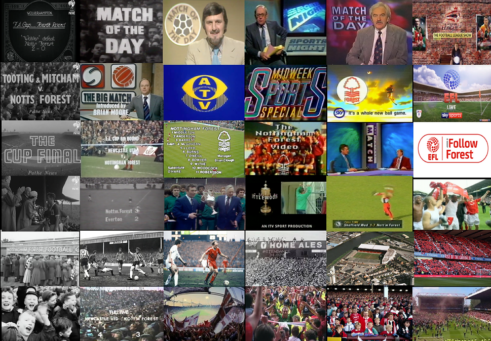 Home page | Forest on TV montage.png