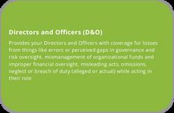 Social Services D&O