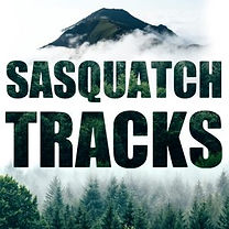 SasTracksWoodsArt-300x300.jpg