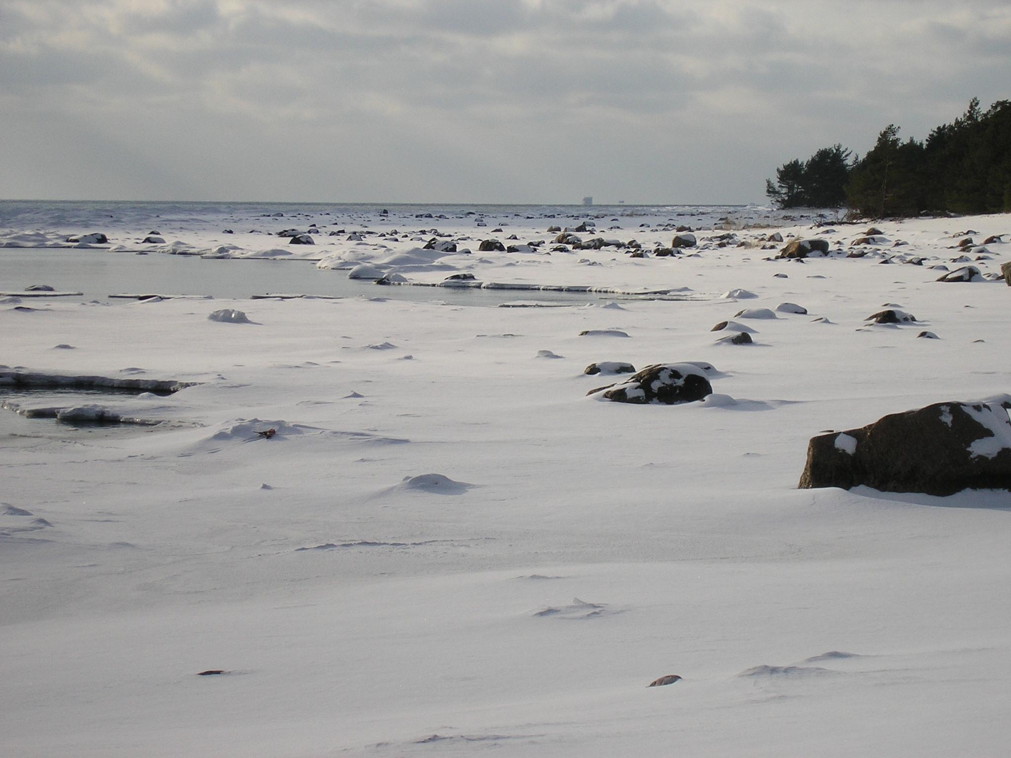 Talv Kõpu lõunarannas.JPG