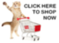 CatCartShopNowButton.jpg