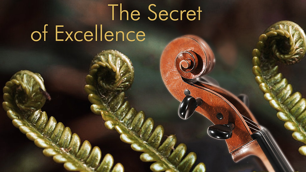 The Secret of Excellence, Tilmann Wick, Cellist Hannover, HMTMH, Tilmann Wick, Prof. Wick, Wick, Tilmann