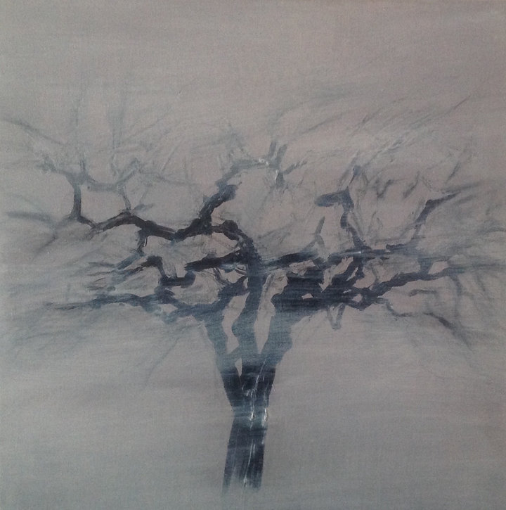 Perenboom 1.jpg
