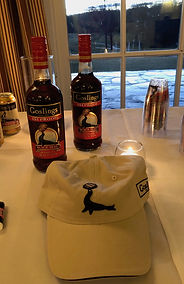 Goslings bottle and hat.jpg