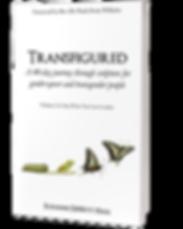 Transfigured3D2.png