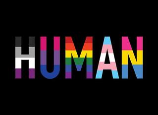Heterosexual AND Queer