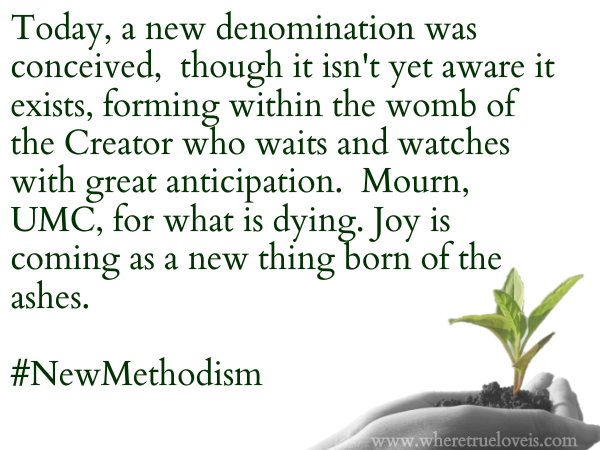 Picture of cupped hands holding a small green sprout, with the words: Today, a new denomination was conceived, though it isn't yet aware it exists, forming within the womb of the Creator who waits and watches with great anticipation. Mourn, UMC, for what is dying. Joy is coming as a new thing born of the ashes. #NewMethodism