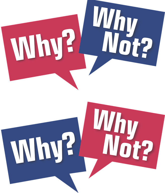 "Picture of two sets of words, reading ""why?"" and ""why not?"""