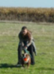 pet boarding, pet kennels, dog boarding, dog kennels, Woodland, solano, vacaville, fairfield, davis, sacramento, napa, rio vista, benecia, concord, pleasant hill, walnut creek