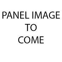 Panel Image holder.jpg