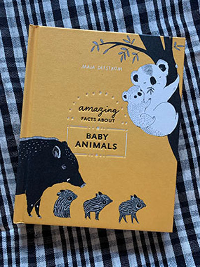Amazing Facts About Baby Animal Book