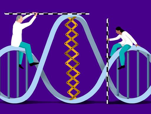 Un enfoque evolutivo revela el impacto de las variantes de sentido erróneo en el autismo