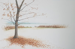 """""""Fall by the Lake"""" SOLD"""