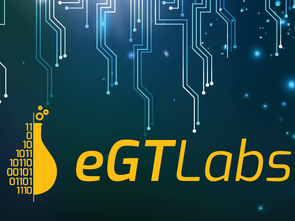 Incubation as a Service: An eGT Labs Story