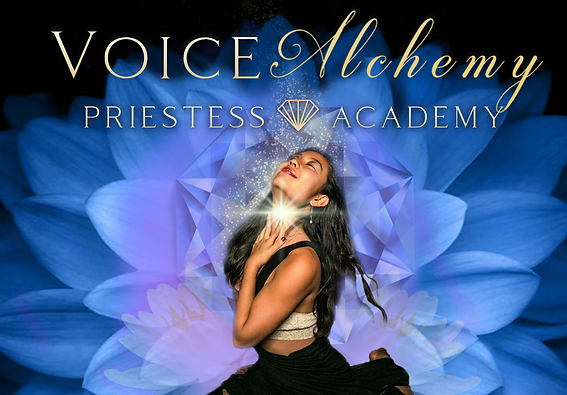 VOICE ALCHEMY _FB BANNER_ with LOGO.png