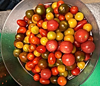 Grapetomatoes1_edited.jpg