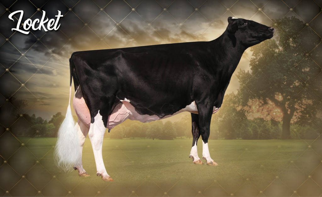 Gloryland-I Goldwyn Locket (EX-94 2E)