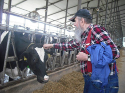 Connecting-with-Cows
