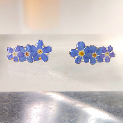 Real forget me not studs earrings 3 flowers in sterling silver