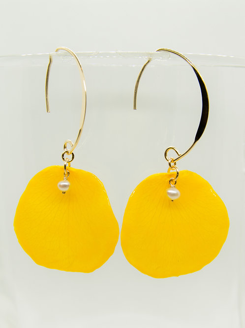Real yellow rose petal earrings in 14ct gold filled