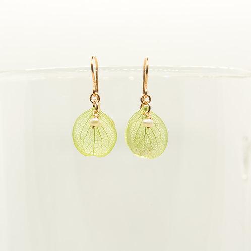 Green hydrangea petal earrings in 14ct rose gold filled