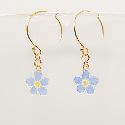 Real forget me not earrings in 14ct gold filled