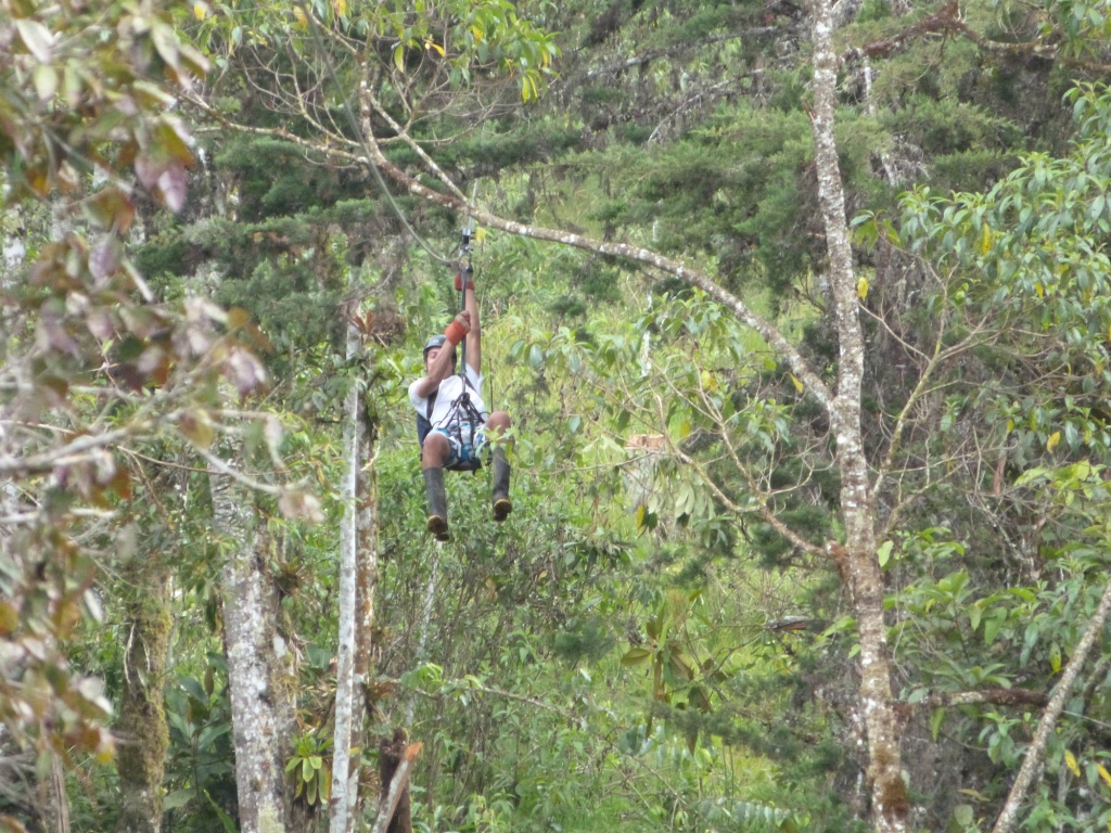 Canopy+Zipline.JPG