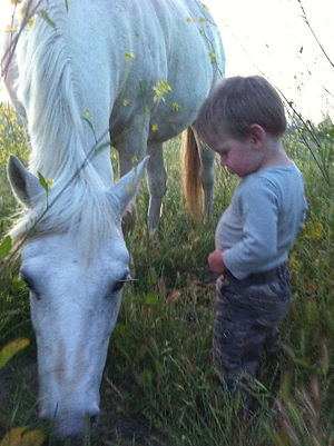 Horse and boy in California