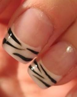 Zebra tips