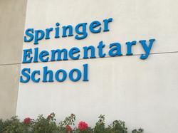 Springer School