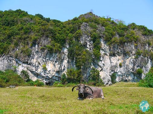 Butterfly Valley, Cat Ba Island, Vietnam