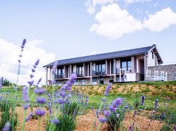 Natura hill house2