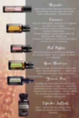 Dream Kit Oils described.png