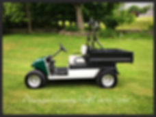 carryall 252 electric golf cart