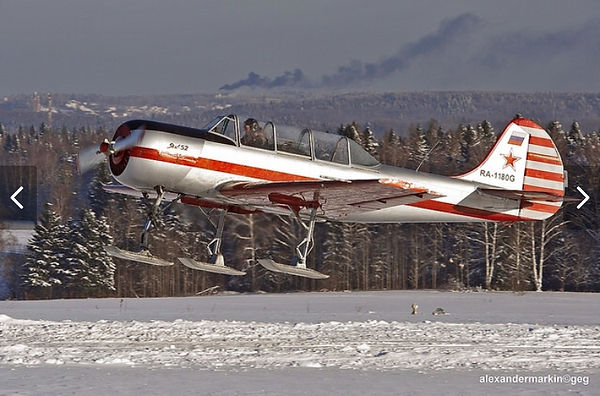 YAK 52 Snow Skies for sale