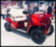 Garia Roadster Mansory by Diane
