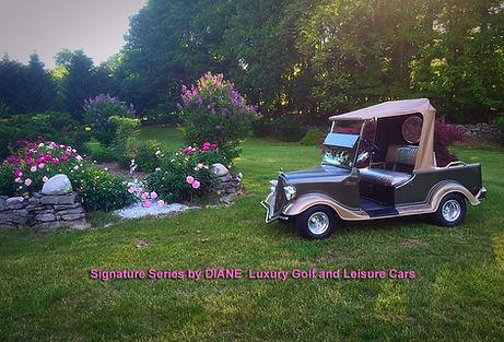 luxury golf car by Diane