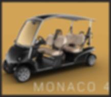 garia street legal golf car