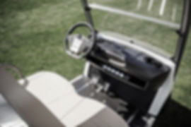 Diane golf cart Garia