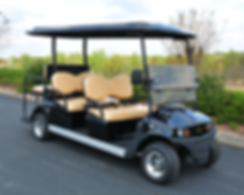 Star ev Magellan golf cart