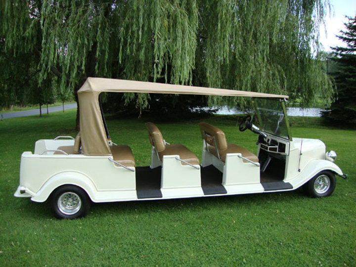 Custom golf cart Diane
