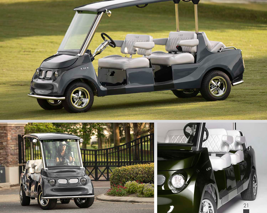 LUX 6 Passenger golf cart