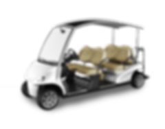 garia courtesy golf cart